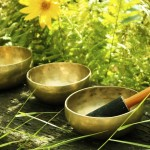 Authentic Ayurveda at Anantya Resort