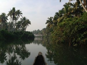 Backwaters tour