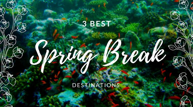 3 best spring break destinations