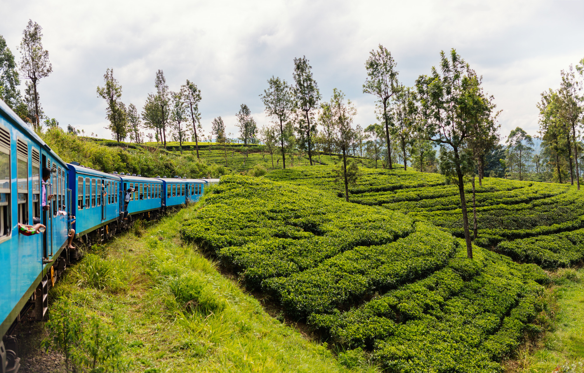 7 Reasons Why Holidaying in Sri Lanka Saves You Money - SpaDreamsTrain ride from Ella to Kandy among tea plantations in the highlands of Sri Lanka.