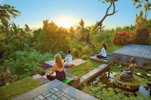Zen Resort- Mind & Balance
