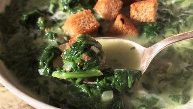 Spinach and Coconut Ayurveda Soup for your Cozy Night-ina soup