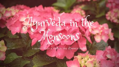 Ayurveda in monsoons image of flowers in the rain