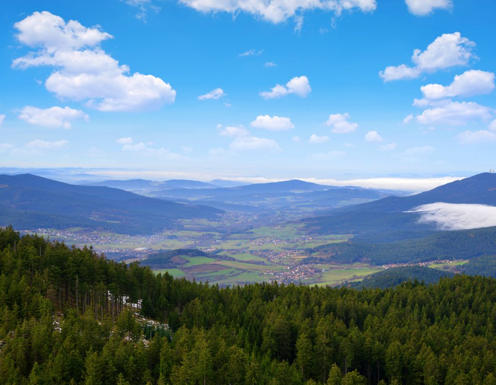 View from mountain Grosser Osser in National park Bavarian forest, Germany.