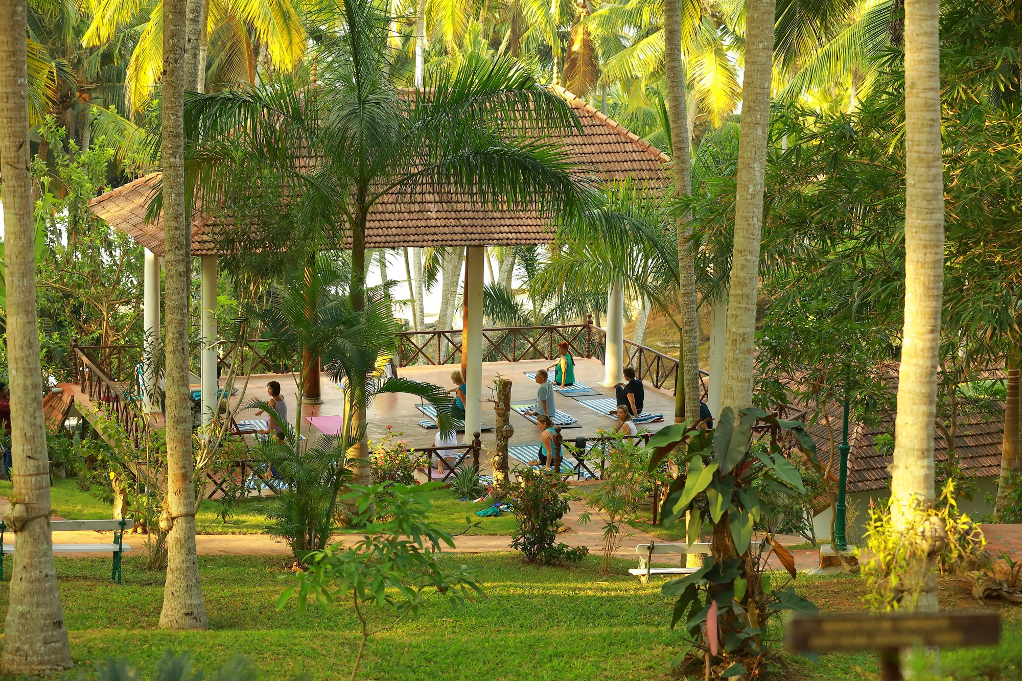 NIKKIS NEST SPADREAMS YOGA IN INDIA